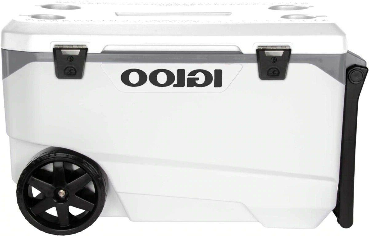 Outdoor Quart Cooler Igloo 137 Cans Durable