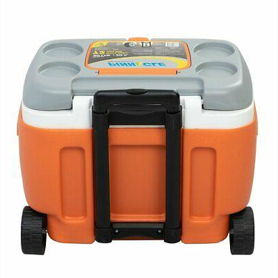 Prudence 31-Quart Portable Hard Ice Chest on Cooler